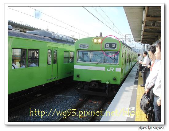 DSC08842.JPG