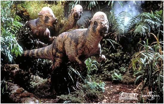 Pachycephalosaurus_group