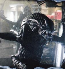 ...........Aliens-versus-Predator-2-Cover-DVD_jpg_fkga