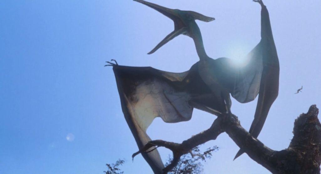 pteranodon01
