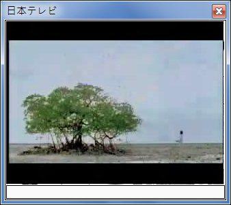 sshot-8.jpg