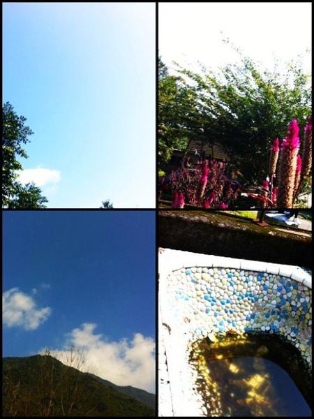 a sunny day02.jpg