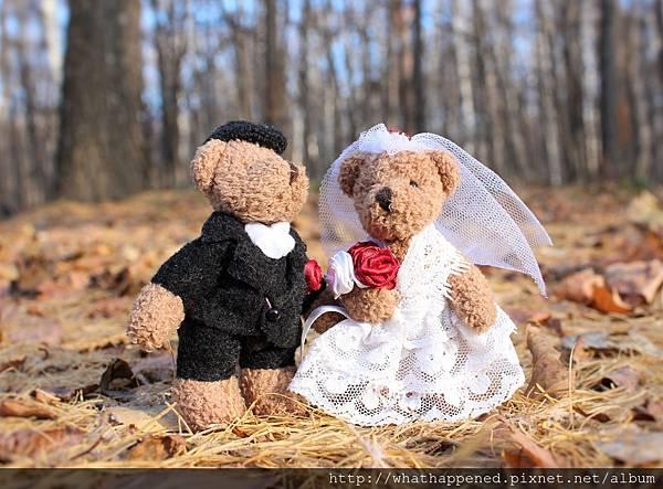 wedding-1034430_1920.jpg
