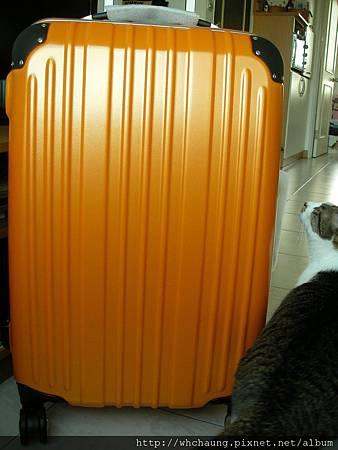 1010324行李箱SANY0333 (5)