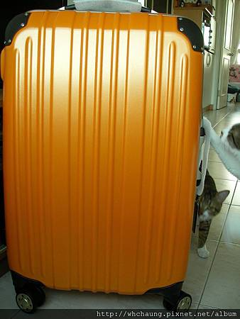 1010324行李箱SANY0333 (6)