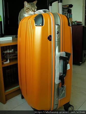 1010324行李箱SANY0333 (7)