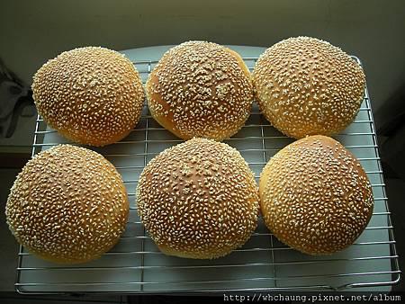 1010417低溫冷藏發酵大漢堡SANY0440 (1)