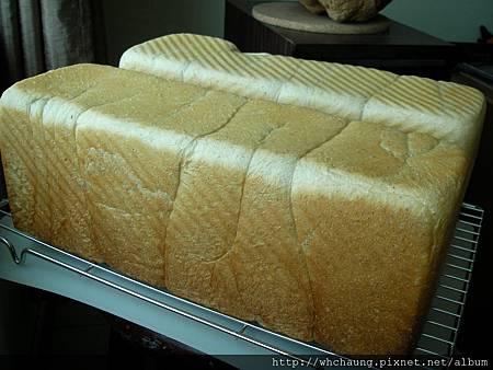 1010525小麥胚芽蜂蜜吐司SANY0092 (2)