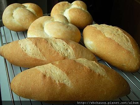 1010604瓦伊森麵包SANY0187 (2)