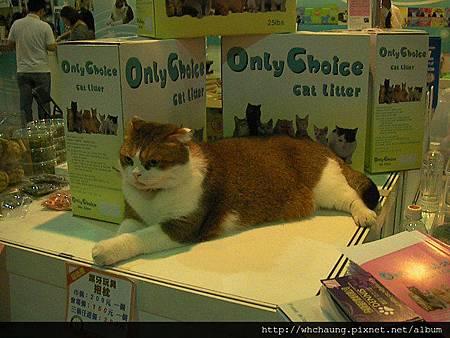 1010715寵物用品展SANY0004 (18)