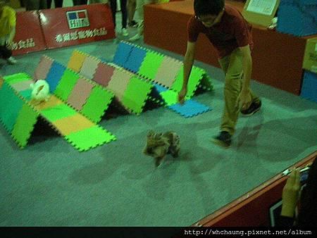 1010715寵物用品展SANY0004 (20)