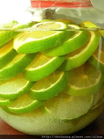 1010806檸檬醋SANY0147 (2)