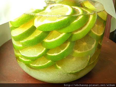 1010806檸檬醋SANY0147 (4)