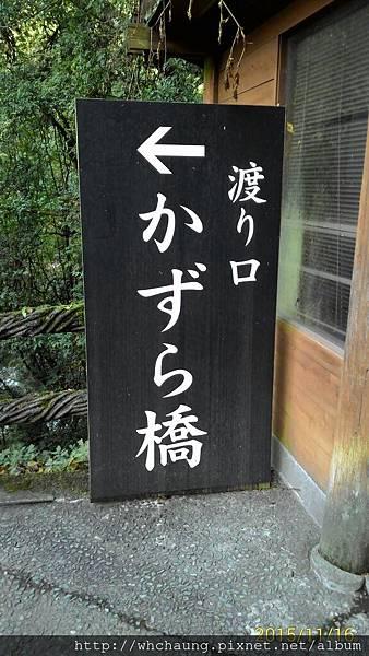 P_20151116_100627_1_p