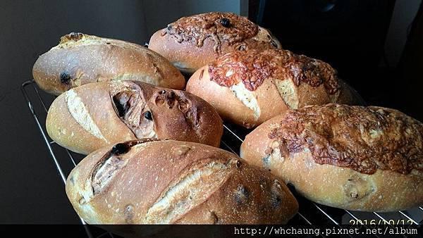 2016.10.12藍莓核桃麵包