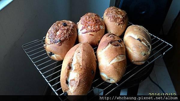 2016.10.12藍莓核桃麵包1