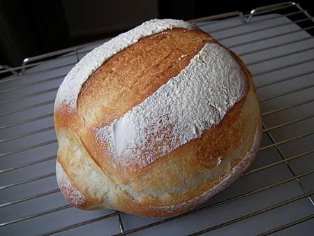 1000406鐵鍋布里麵包SANY0269.JPG
