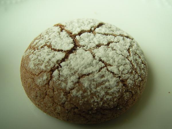 991207巧克力蛋黃小西餅SANY0177 (4).JPG