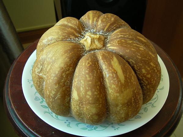 990925南瓜乳酪蛋糕SANY0181 (2).JPG