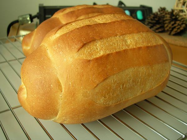 991015哈斯變化麵包SANY0380 (10).JPG