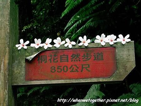 PICT6009.jpg