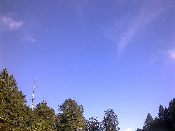 20110712阿里山家族旅遊~感謝太陽在八九點才露臉^^