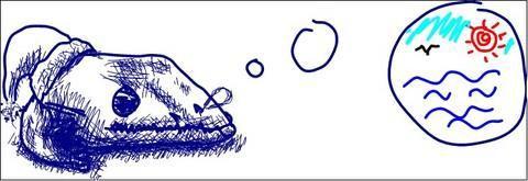 夢想著湖的安康魚