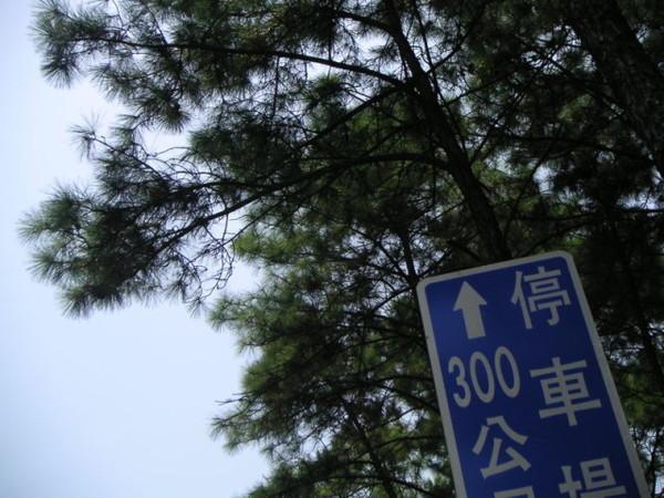 PICT0043.jpg