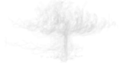 空氣樹.PNG