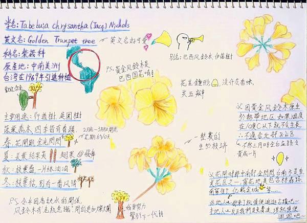 風鈴木2.jpg