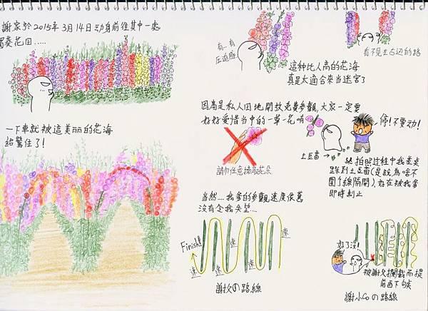 蜀葵4.jpg