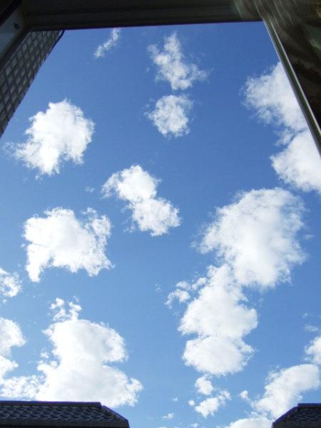 窗外飄著可愛的雲