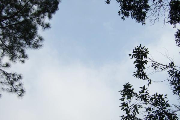 近日來難得晴空