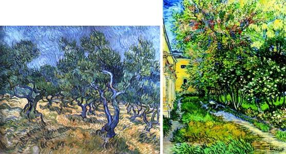橄欖樹林,聖雷米療養院的花園