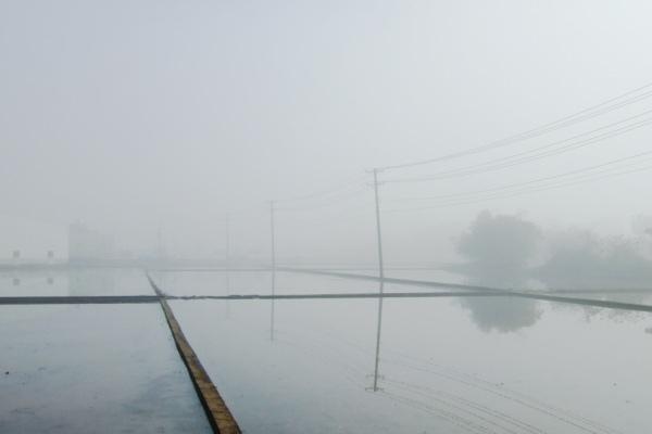 Feb. 23 上班時最喜愛的路段,今晨飄著濃霧。