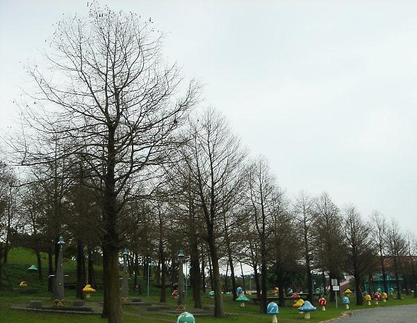 冬山河自行車道。親水公園