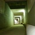 高雄。輕旅行|橋頭。台糖 防空洞,最高作戰指揮中心
