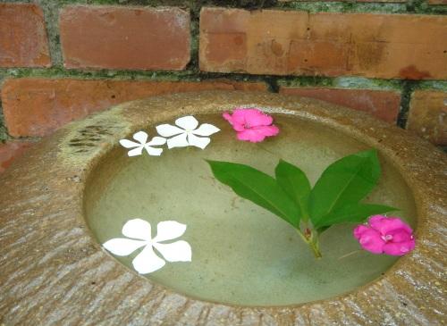 華陶窯。小花