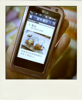 P1080457-pola01.jpg
