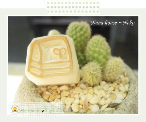 Nana house~Neko-交作業-4.jpg