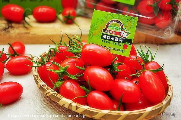DSC_0771甘園玉女小番茄.jpg