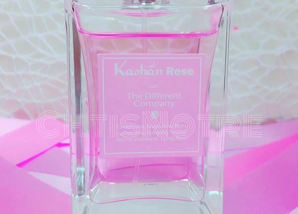 The Different Company Kâshân Rose 9.JPG
