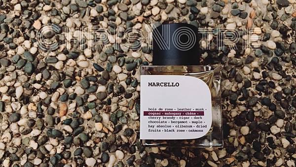 pryn marcello 9.jpg