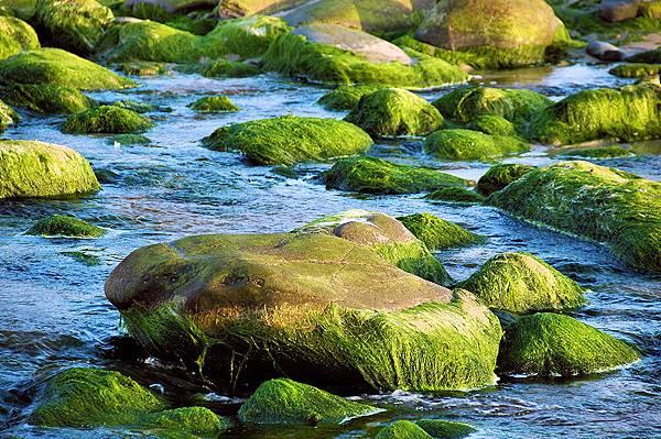 【Tom Ford】Oud Minerale 神秘海洋烏木礦物 7.jpg