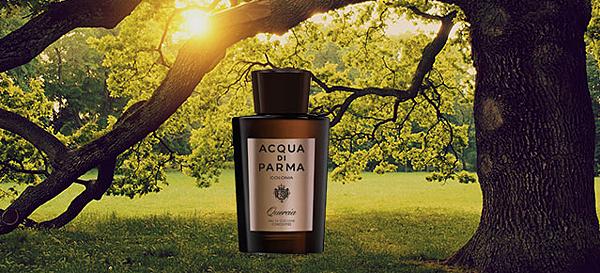 【Acqua di Parma】Quercia (帕爾瑪之水 橡木)1.png