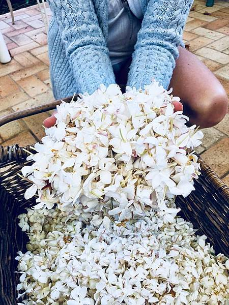 【April Aromatics】Jasmina (茉莉米娜)6.jpg