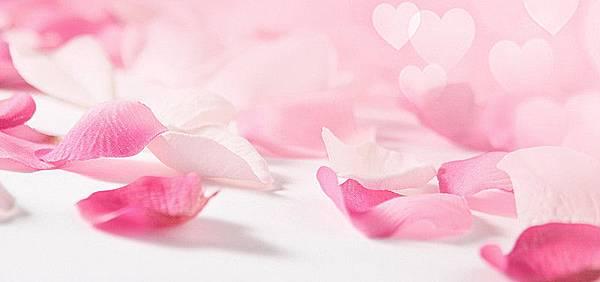 【Viktor %26; Rolf】Dancing Roses (舞動玫瑰)6.jpg