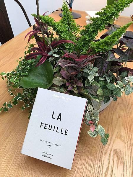 【Miller Harris】La Feuille (常春藤)7.jpg
