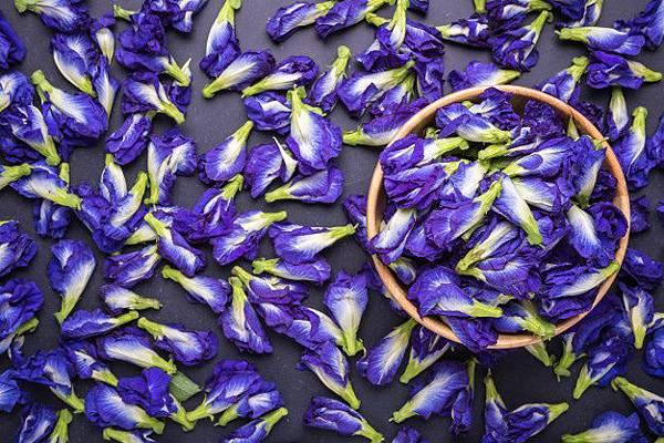 【The Merchant of Venice】Blue Tea (藍茶)3.jpg