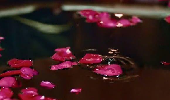 【Butterfly Thai Perfumes】กุหลาบมอญ (大馬士革玫瑰)3.jpg